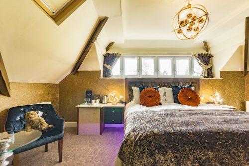 Cranleigh-Boutique-Luxury-Room 9 - web version - image-3